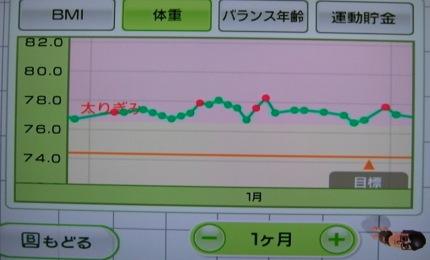 夫のグラフ