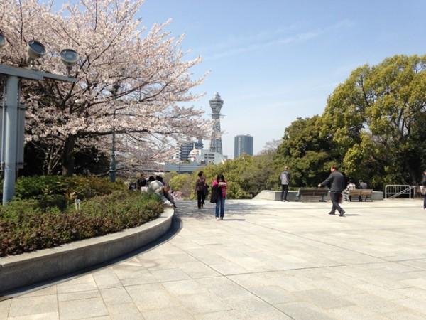 通天閣と桜
