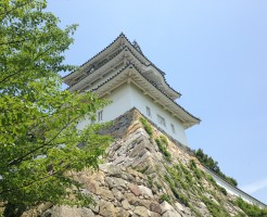 明石城の櫓を見上げる